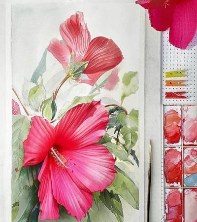 水彩画:可临摹水彩画花卉作品欣赏