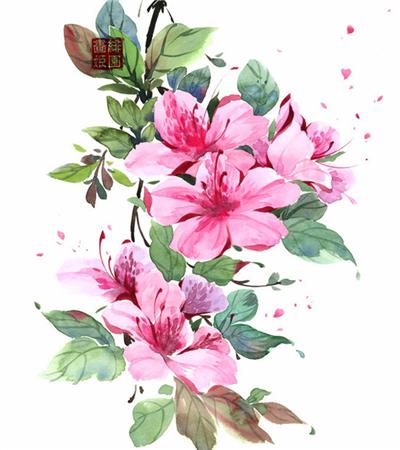一组小清新水彩花卉入门临摹图片