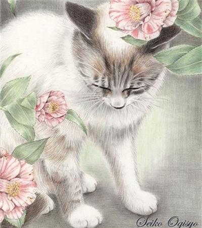彩铅画猫咪作品欣赏(彩铅画临摹素材)