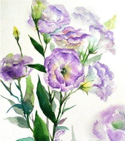 水彩画小清新花卉作品欣赏