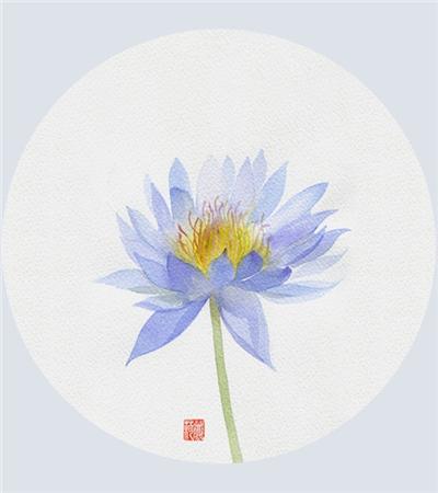 一组水彩花卉临摹素材欣赏