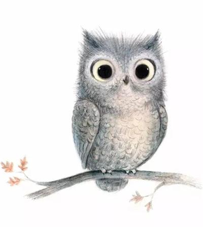 一组彩铅画小动物素材分享
