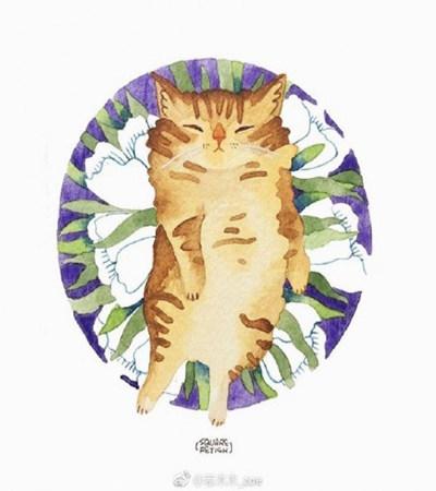 猫咪水彩画作品欣赏