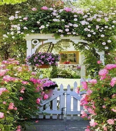 水彩画作品欣赏:一组开满鲜花的庭院美景图