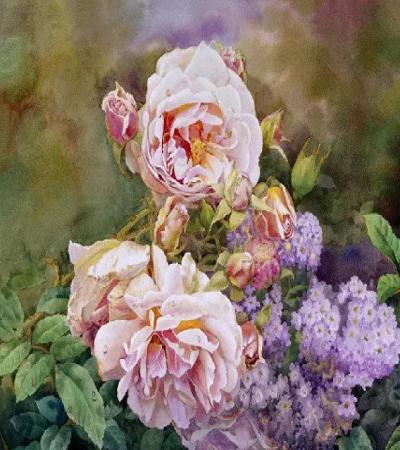 水彩画作品欣赏:精湛的月季花画