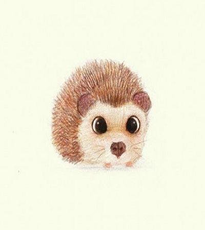 一组可爱小动物彩铅画作品欣赏