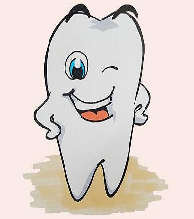 牙齿简笔画怎么画?可爱的牙齿画法分享