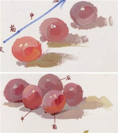 靜物葡萄怎么畫?水分葡萄的繪畫步驟有哪些?