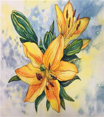 百合花怎么畫?鋼筆淡彩的步驟有哪些?