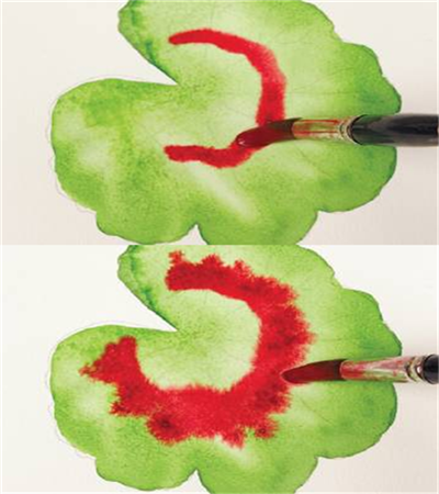 水彩混色技巧是什么?同类混色和互补色如何运营?