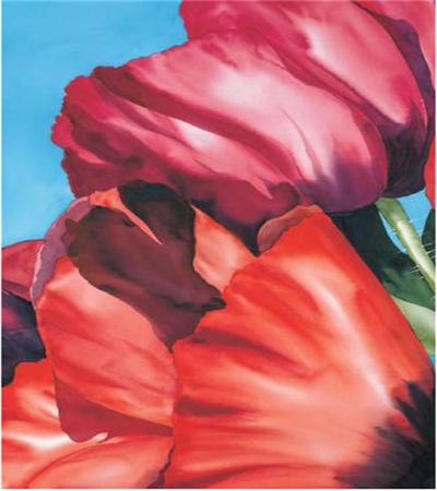 罂粟花瓣怎么画?水彩留白该怎么做?