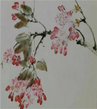 樱花簇怎么画?超级详细的樱花国画教程分享