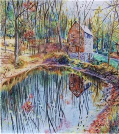 森林景色怎么画?详细的绘画步骤有哪些?