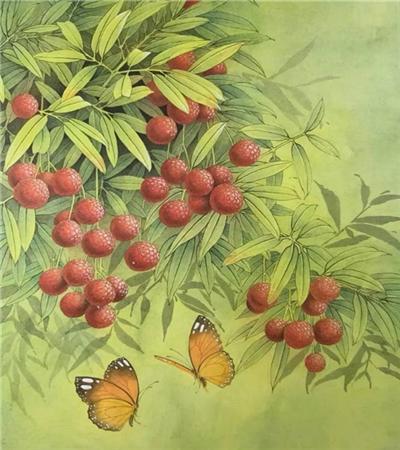 荔枝怎么画?蝶戏荔枝的工笔画法是什么?