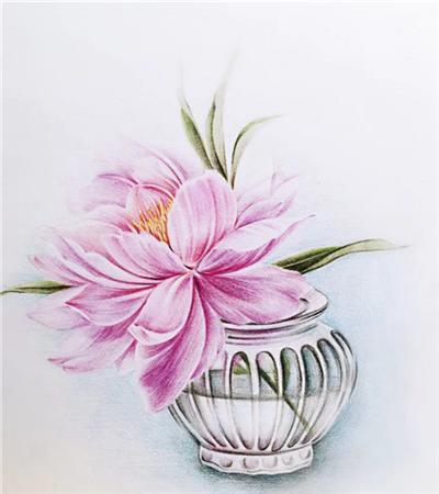 复古花瓶中的芍药怎么画?详细的彩铅画步骤有哪些?