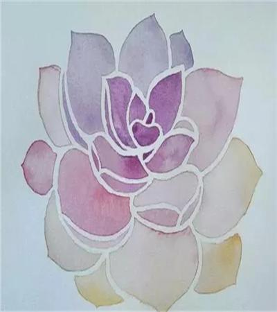 多肉植物怎么画?紫牡丹水彩画法是什么?