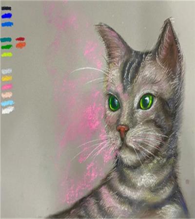 色粉画猫怎么画?有哪些绘画步骤?
