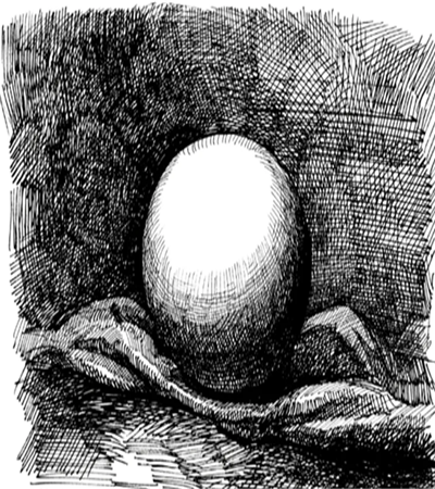鸡蛋怎么画?如何用钢笔画球体?