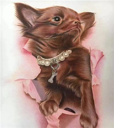 棕色小狗奶怎么画?有哪些彩铅绘画步骤?