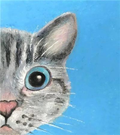 半边猫脸怎么画?教你画一只喵星人