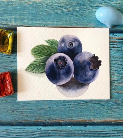 蓝莓怎么画?龙果水彩画步骤有几步?