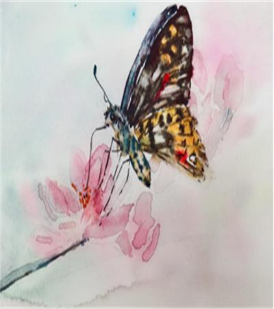 花朵上的蝴蝶怎么画?详细的图文步骤有哪些?
