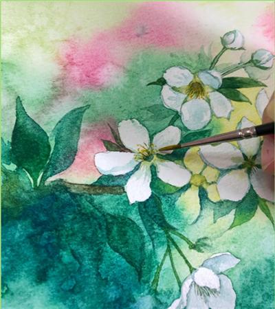 水彩梨花怎么画?纯白梨花的绘画步骤有哪些?