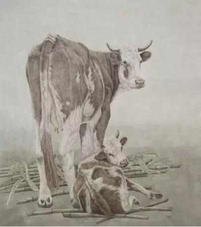 草原上的牛怎么画?牛的工笔画步骤有哪些?