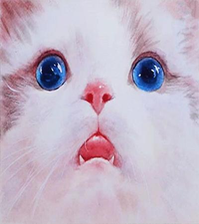 蓝眼睛喵咪怎么画?粉嫩小猫的水彩步骤有几步?