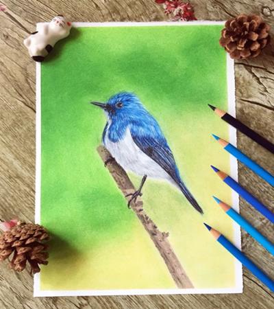 蓝色小鸟怎么画?教你画一只可爱的小肥啾
