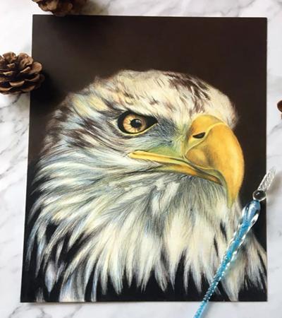雄鹰怎么画?飞鹰的头像绘画步骤有哪些?