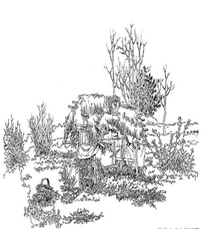 茅草棚怎么画?田野中的茅草棚钢笔画步骤有哪些?