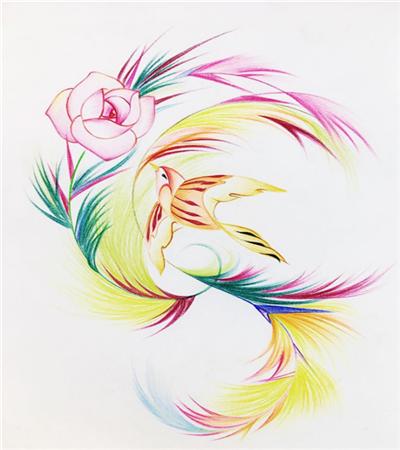 飞鸟鲜花怎么画?如何练习线条绘画?
