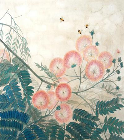 合欢花怎么画?绒花树的工笔步骤有几步?