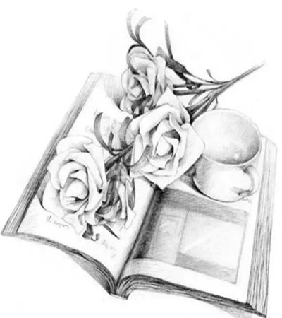 书上的白玫瑰怎么画?素描玫瑰的步骤有哪些?