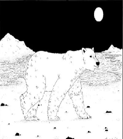 北极熊怎么画?北极熊的绘画流程是什么?