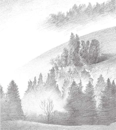 小树林怎么画?如何进行构图解析?