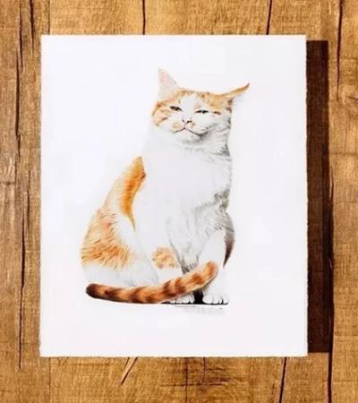 橘猫怎么画?如何表达猫咪的慵懒形象?