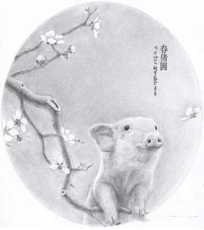 扇面小猪怎么画?详细的素描画法是什么?