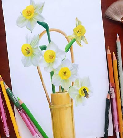 水仙花怎么画?彩铅绘画步骤有 哪些?