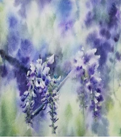 紫藤花怎么画?详细的水彩画步骤有哪些?