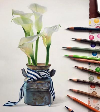 马蹄莲怎么画?如何画白色的物体?