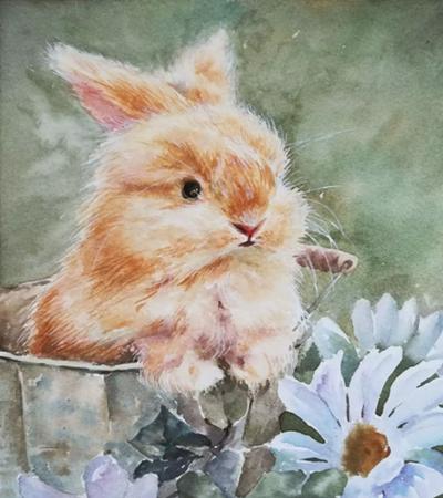 水彩兔子怎么画?绘画过程是什么?