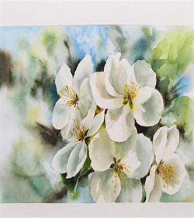 洁白的梨花怎么画?绘画流程是什么?