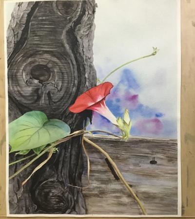 老树旁的牵牛花怎么画?如何画红色喇叭花?
