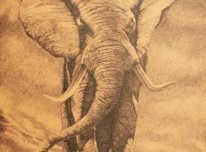 董长生钢笔画作品《吉象如意》