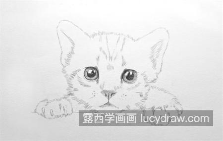小猫咪怎么画